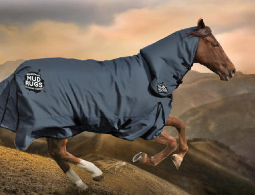 Choosing Fitting and Caring for Your Horse Rugs